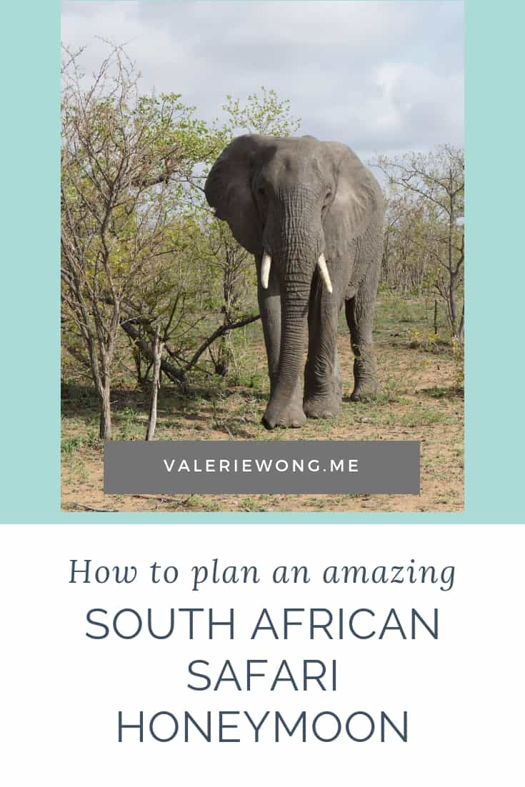 Travel Guide ~ Planning a South Africa Honeymoon | If South Africa is on your short list of honeymoon destinations, be sure to check out this travel guide for planning a South Africa honeymoon. We share travel tips + our itinerary for taking in the best that South Africa, Botswana & Zimbabwe have to offer -- safaris, wine tours, Cape Town, Victoria Falls & more! | Valerie Wong Wellness #SouthAfricaHoneymoon #SouthAfrica #SouthAfricaTravel #honeymoondestinations #ValerieWongWellness