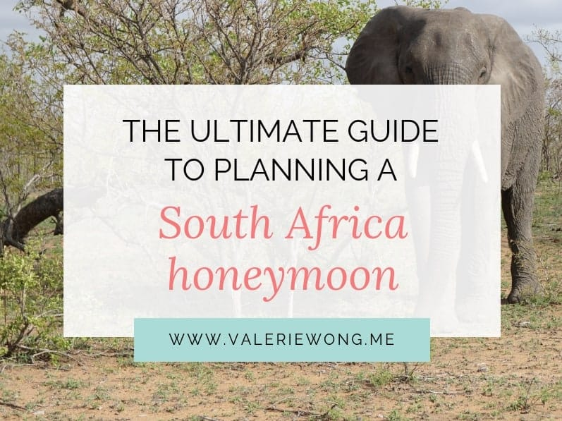 Travel guide for planning a South Africa honeymoon